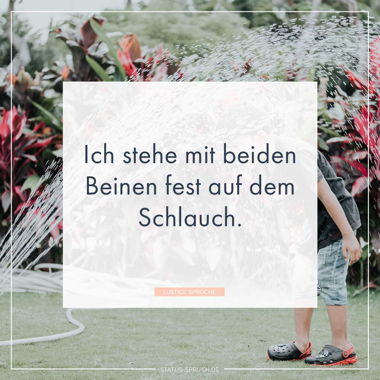 Lustige Sprüche (99+) | Whatsapp Status Sprüche [2018]