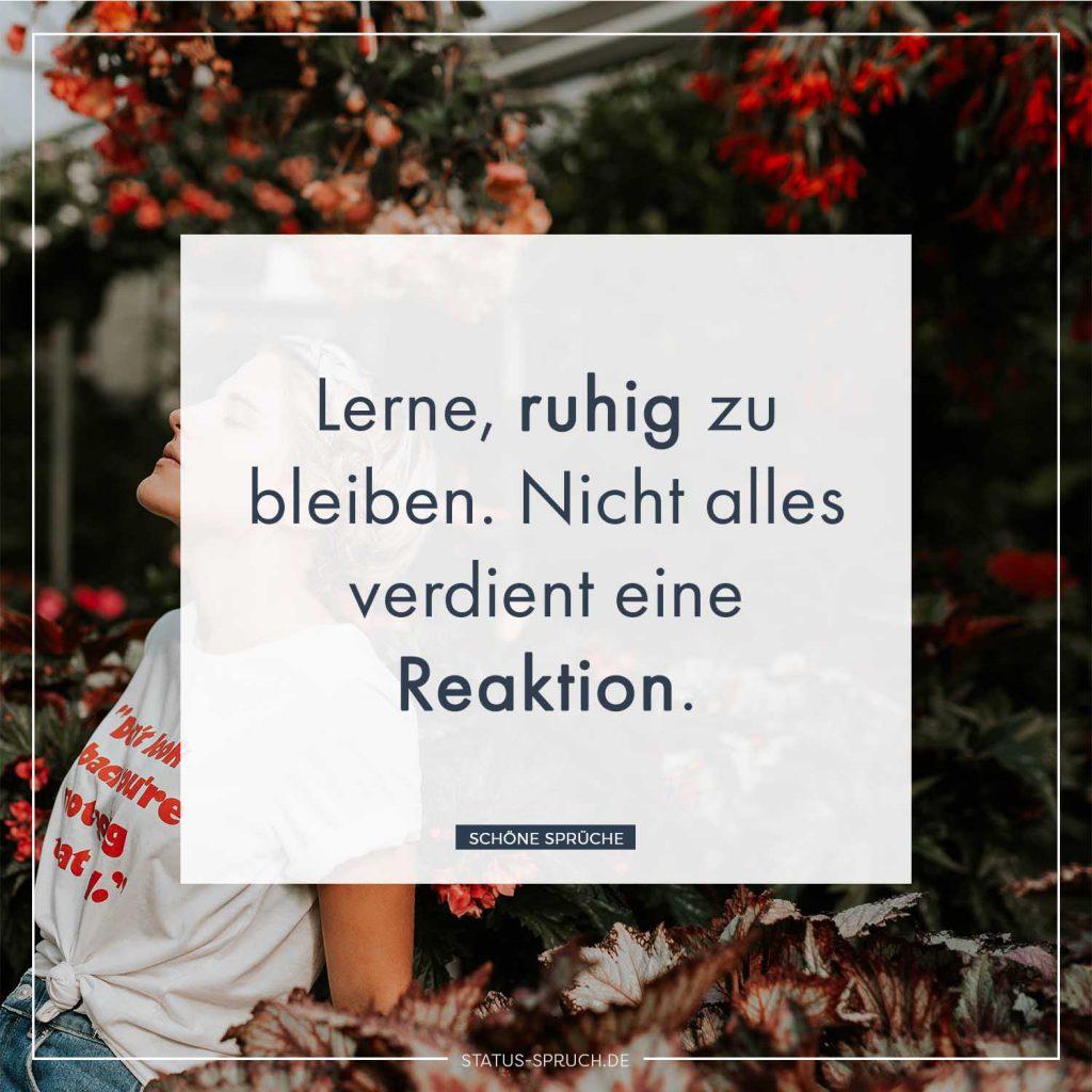 Lerne, ruhig zu bleiben. Nicht alles verdient eine Reaktion.